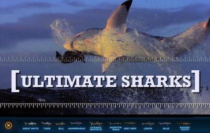 Ulitimate Sharks - iPad App for Discovery
